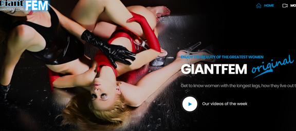 GiantFem